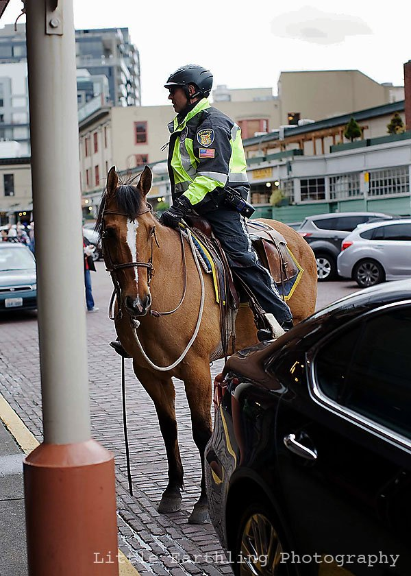 pike place market, policeman on horse, pike place market horse