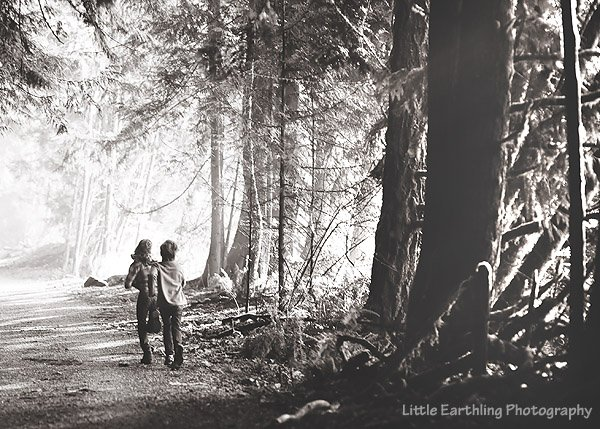 bellingham ,whatcom  county, family hikes, pacific northwest, pacific northwest hikes, large family, large family blog, homeschool, homeschool blog