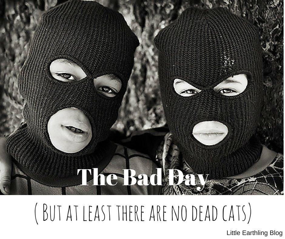 The BAD Day( But at least there are no dead cats)