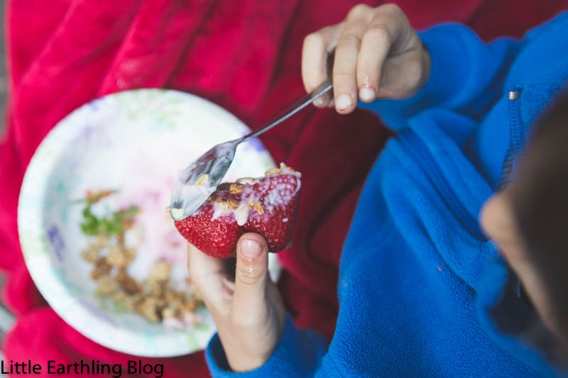 Yogurt and granola parfaits are a great family camping breakfast!