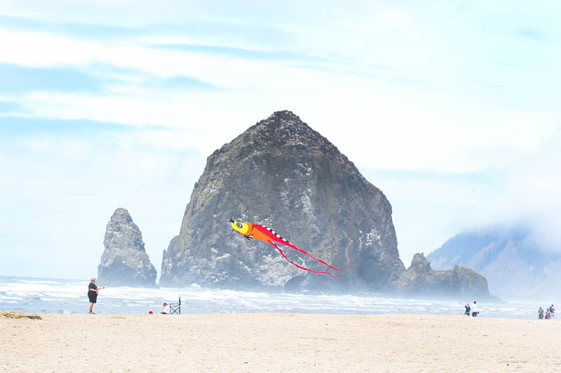 Kite at Canon Beach in Oregon