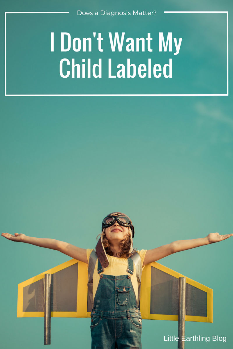 I don't want my child to be labeled and will a diagnosis even matter?