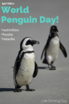 Fun activities for World Penguin Day {April 25th}