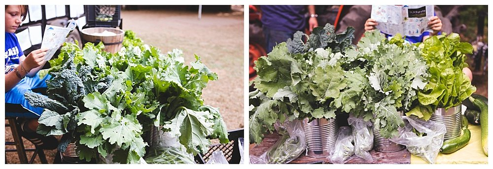 Hidden Valley Camp has a garden where the kids help harvest and then serve the vegetables at meals.