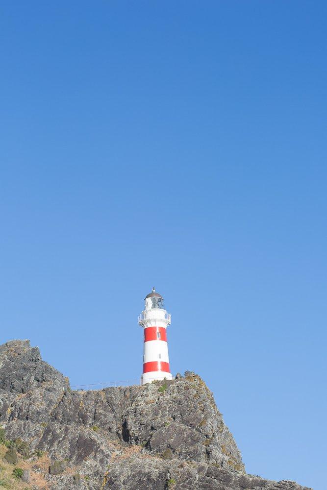 Climb the 252 steps to the Cape Palliser Lighthouse.