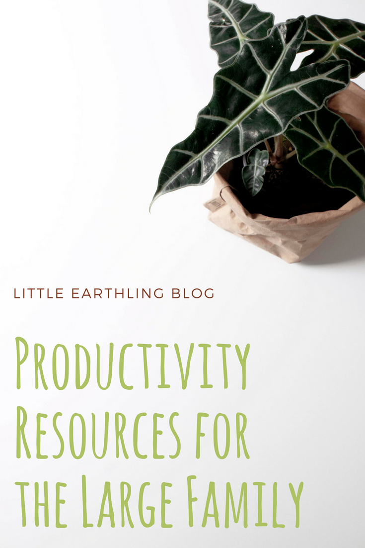 The best productivity resources for large families
