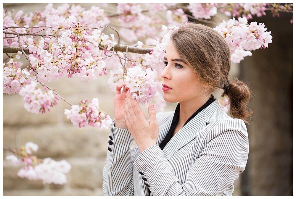 Cherry blossoms at Western Washington University.