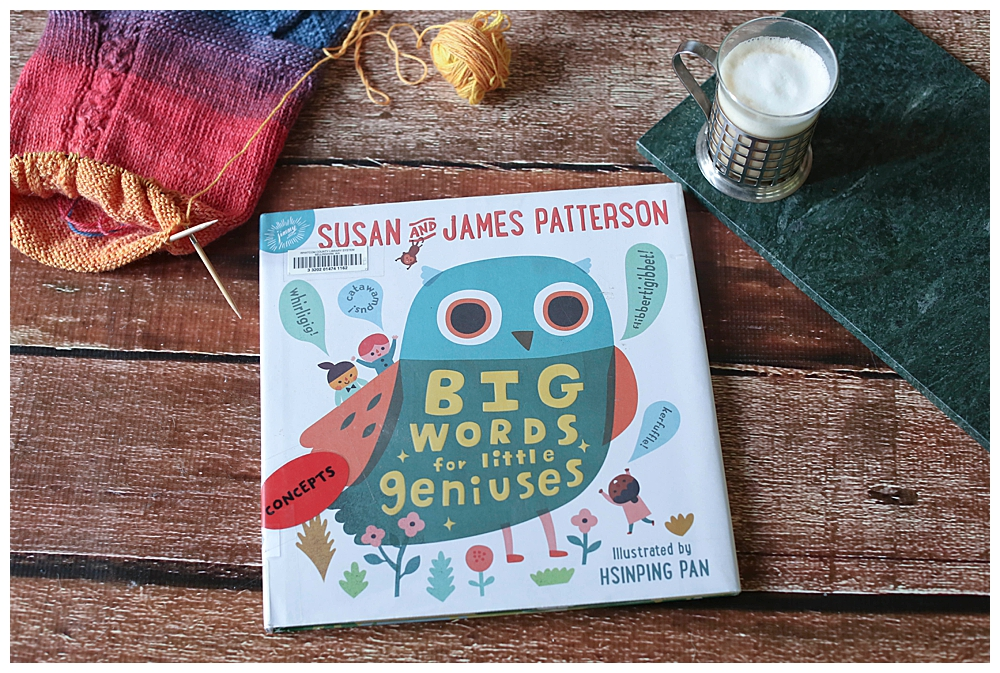 Big Words for Little Geniuses Review