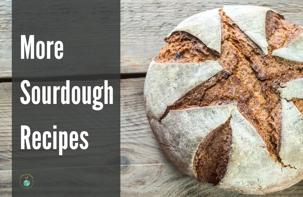 More Sourdough Recipes around the web.