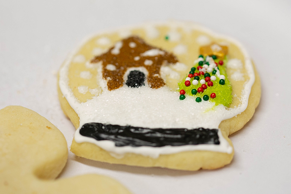 Snowglobe cookie