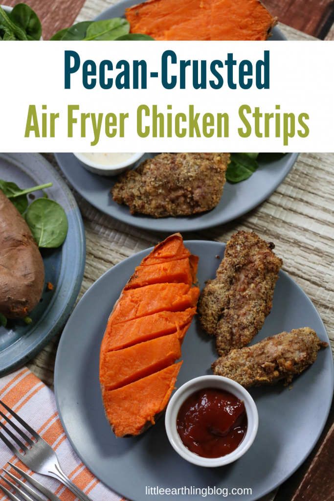 Pecan-crusted air fryer chicken strips are delicous and gluten-free!