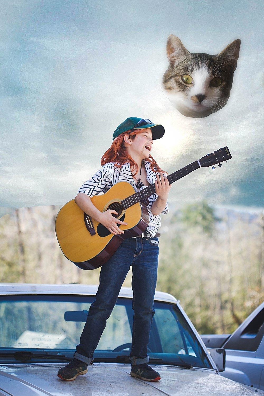I Saw Tiger parody album cover.