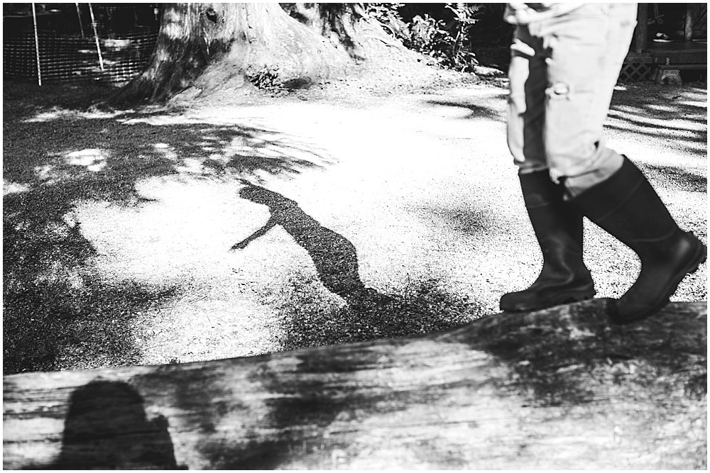 Apollo's shadow
