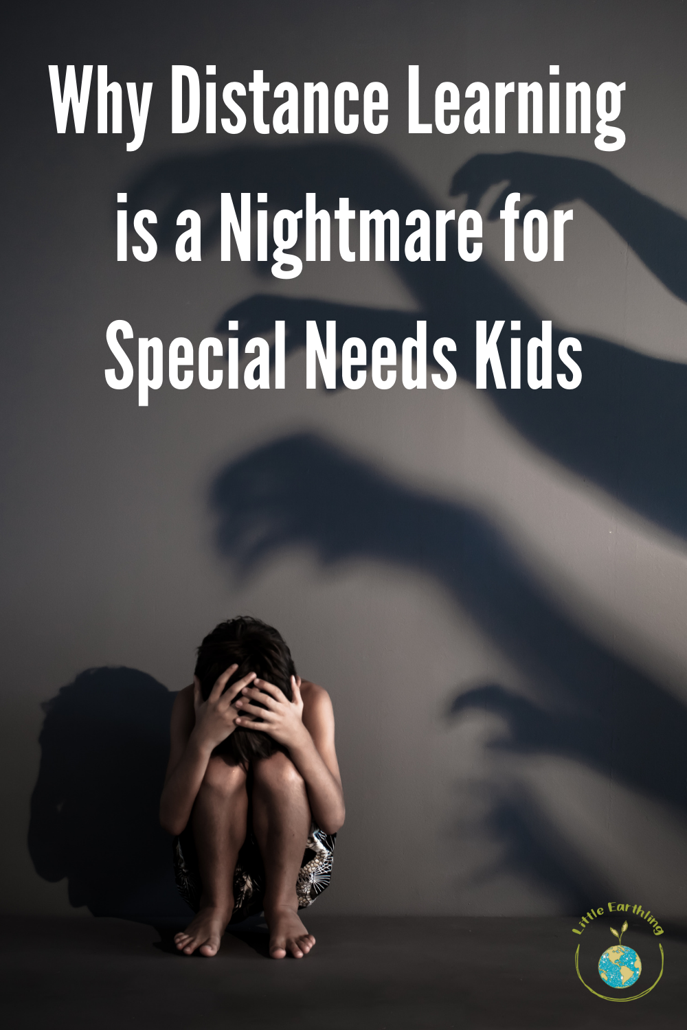 Why distance learning is a nightmare for special needs kids