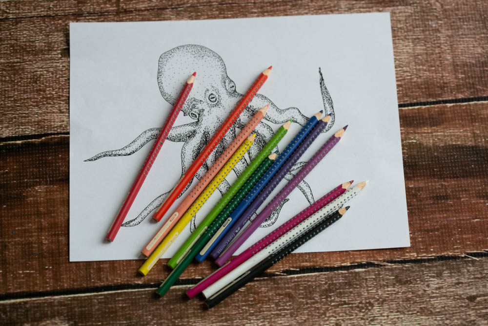 Fabrer Castell Grip Colored Pencils are the best colored pencils for homeschooling.